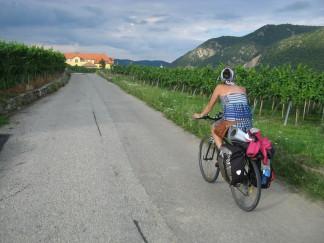 Circulando entre los viñedos del valle de Wachau