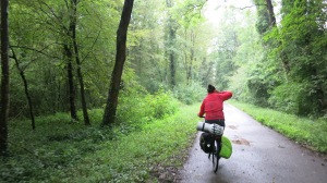 Entrando a Colmar por el bosque de Neuf