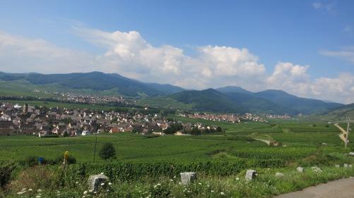 Paisaje del viñedo de Alsacia