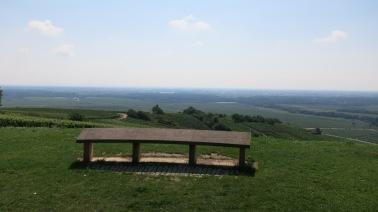 Vistas de la llanura alsaciana desde lo alto