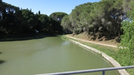 Bifurcación de Canal.
