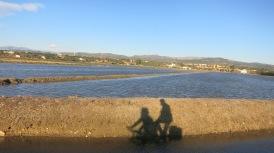 Circulando por el Delta del Ebro