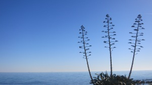 Estampa mediterránea
