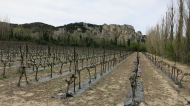 Paisaje del camino a Avignon