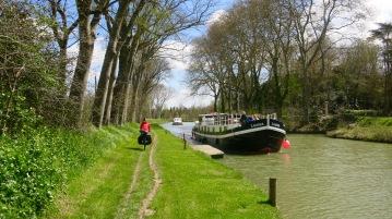Camino junto al Canal IV