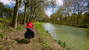 Camino junto al Canal V