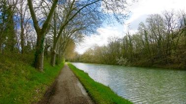 Retomando el Canal