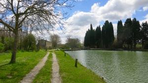 Camino junto al Canal II