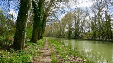 Camino junto al Canal III