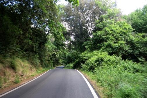 Carretera bajando de Capalbio
