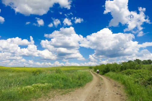 Paisaje primaveral del camino