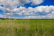 Cielo y campo de la Toscana
