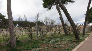 Las ruinas de la antigua Ampurias