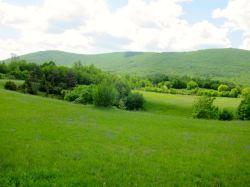 Paisaje en Eslovenia