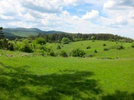 Paisaje en Eslovenis